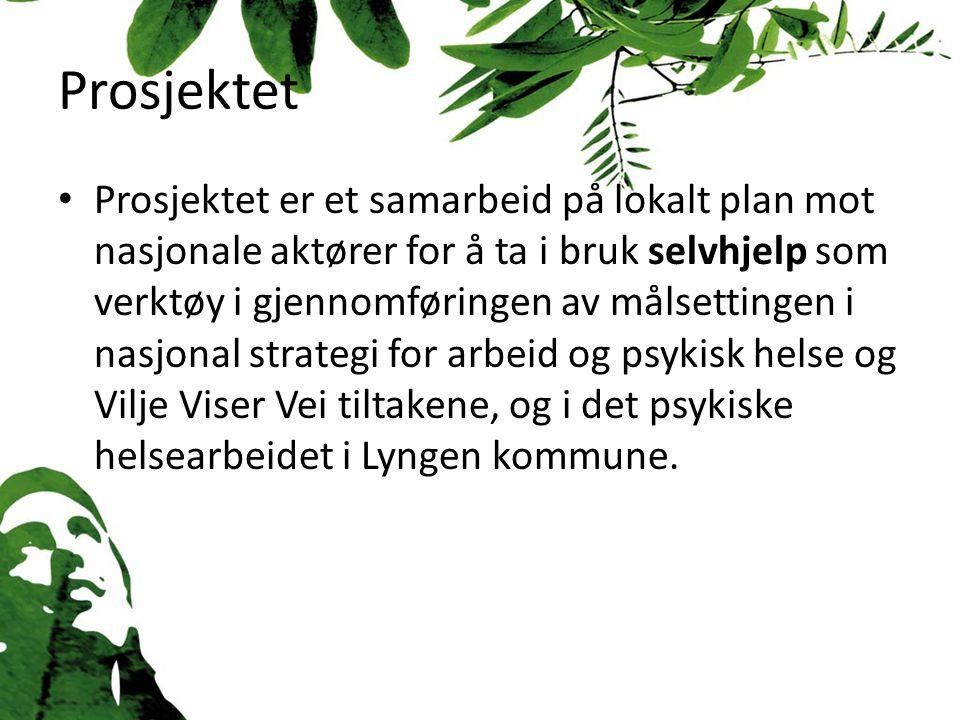 Prosjektet Prosjektet er et samarbeid på lokalt plan mot nasjonale aktører for å ta i bruk selvhjelp som verktøy i gjennomføringen av målsettingen i nasjonal strategi for arbeid og psykisk helse og Vilje Viser Vei tiltakene, og i det psykiske helsearbeidet i Lyngen kommune.