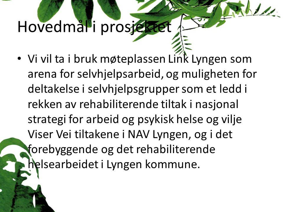 Hovedmål i prosjektet Vi vil ta i bruk møteplassen Link Lyngen som arena for selvhjelpsarbeid, og muligheten for deltakelse i selvhjelpsgrupper som et ledd i rekken av rehabiliterende tiltak i nasjonal strategi for arbeid og psykisk helse og vilje Viser Vei tiltakene i NAV Lyngen, og i det forebyggende og det rehabiliterende helsearbeidet i Lyngen kommune.