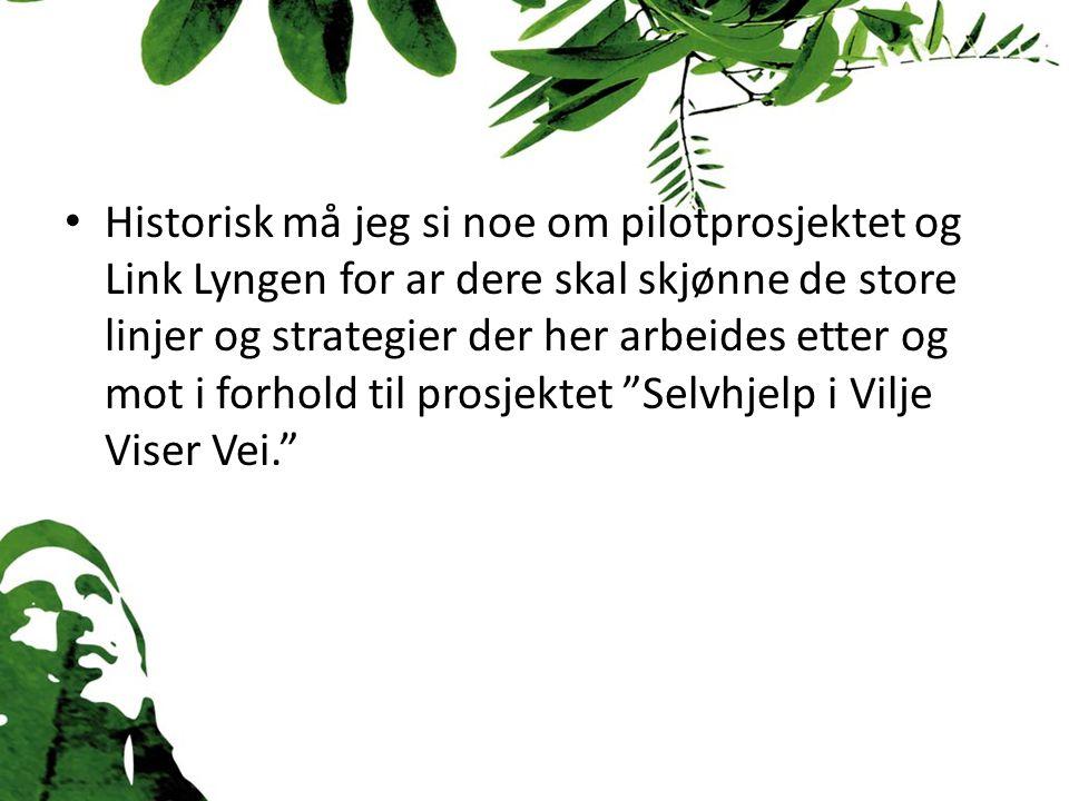 Link Lyngen er blitt en likeverdig samfunnsaktør i det lokale forebyggende og rehabiliterende helse.