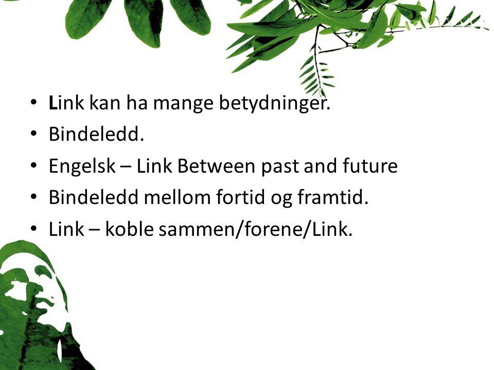 Link kan ha mange betydninger. Bindeledd.