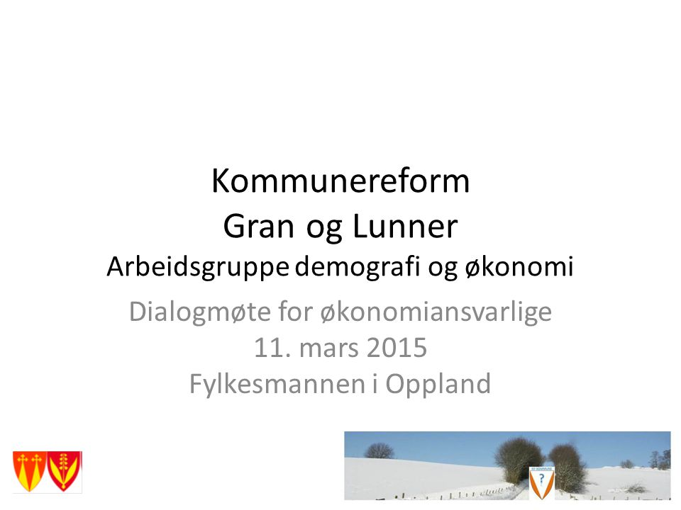 Kommunereform Gran og Lunner Arbeidsgruppe demografi og økonomi Dialogmøte for økonomiansvarlige 11.