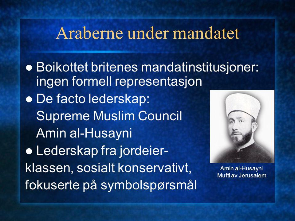 Araberne under mandatet Boikottet britenes mandatinstitusjoner: ingen formell representasjon De facto lederskap: Supreme Muslim Council Amin al-Husayni Lederskap fra jordeier- klassen, sosialt konservativt, fokuserte på symbolspørsmål Amin al-Husayni Mufti av Jerusalem