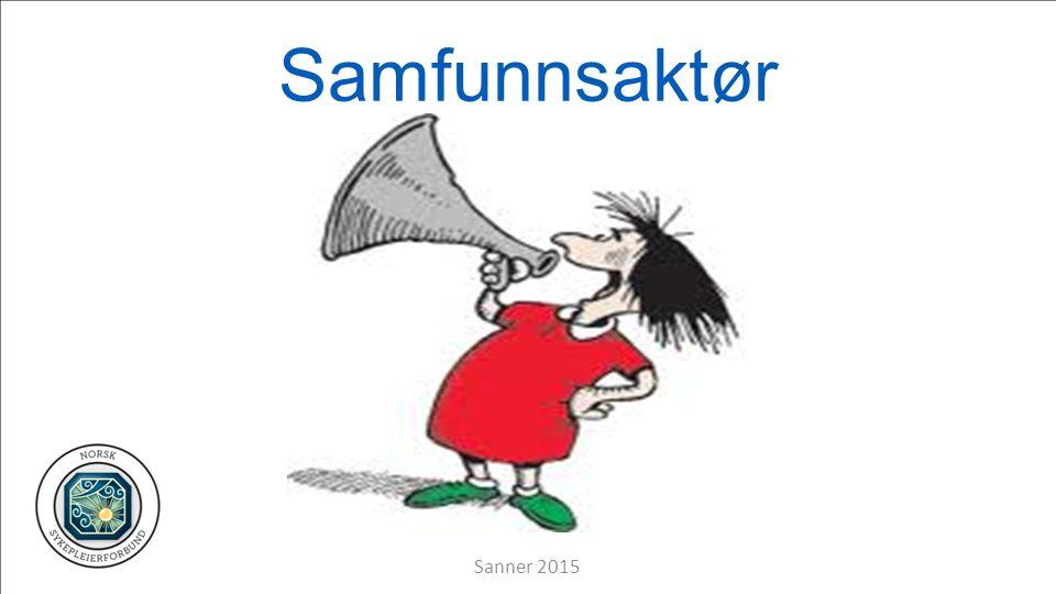 Samfunnsaktør Sanner 2015