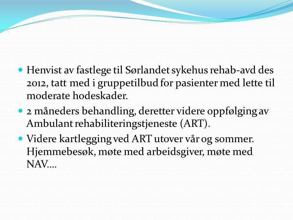 Henvist av fastlege til Sørlandet sykehus rehab-avd des 2012, tatt med i gruppetilbud for pasienter med lette til moderate hodeskader. 2 måneders beha