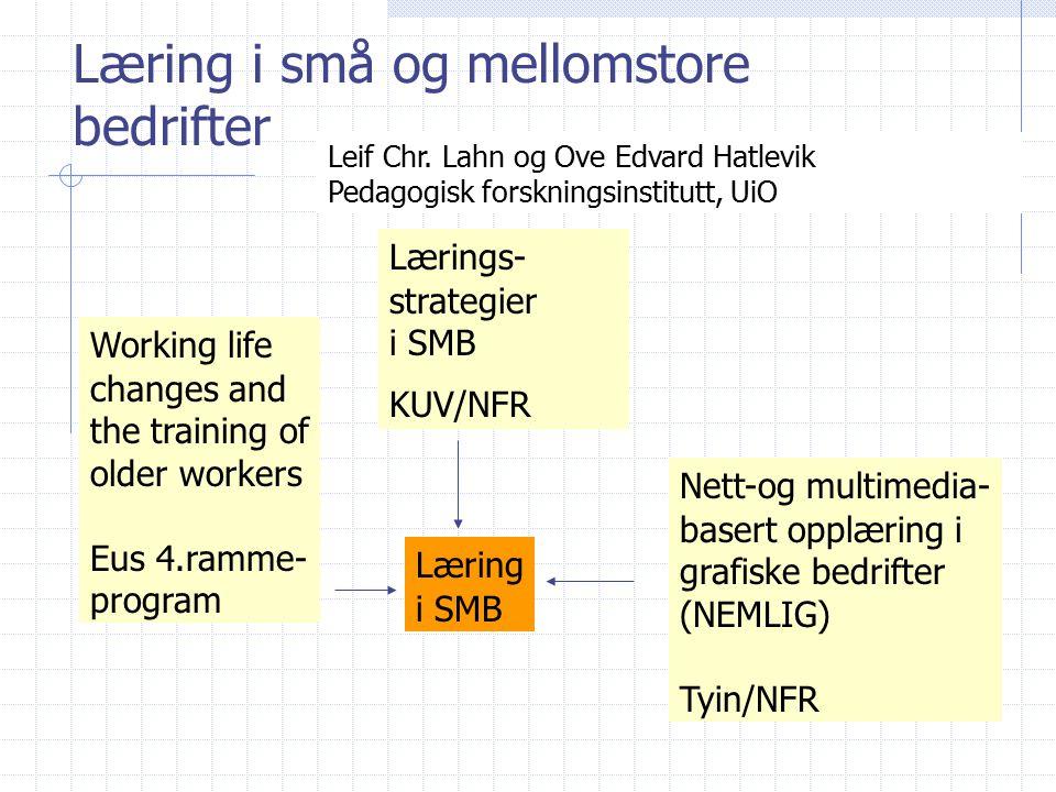 Læring i små og mellomstore bedrifter Lærings- strategier i SMB KUV/NFR Working life changes and the training of older workers Eus 4.ramme- program Nett-og multimedia- basert opplæring i grafiske bedrifter (NEMLIG) Tyin/NFR Læring i SMB Leif Chr.