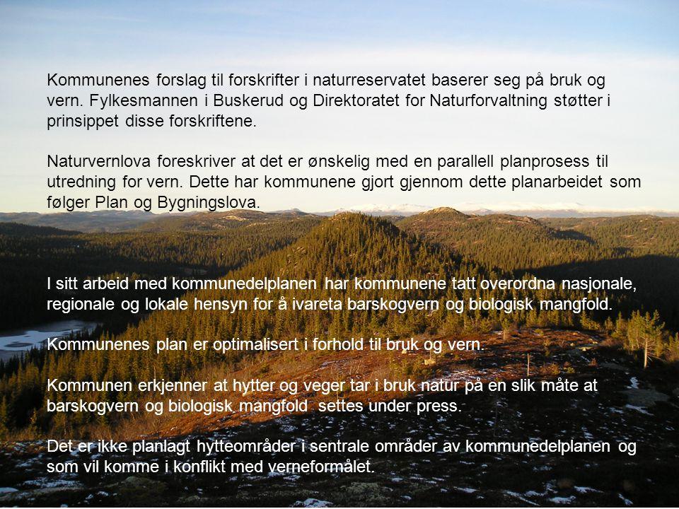 Kommunenes forslag til forskrifter i naturreservatet baserer seg på bruk og vern. Fylkesmannen i Buskerud og Direktoratet for Naturforvaltning støtter