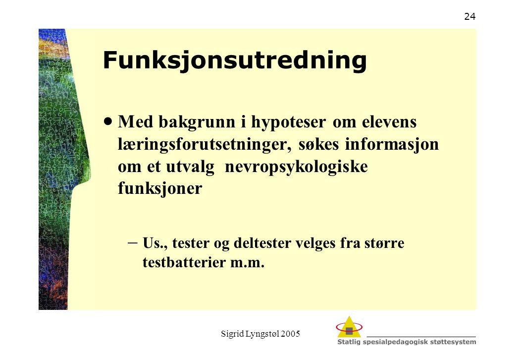 Sigrid Lyngstøl 2005 24 Funksjonsutredning  Med bakgrunn i hypoteser om elevens læringsforutsetninger, søkes informasjon om et utvalg nevropsykologis