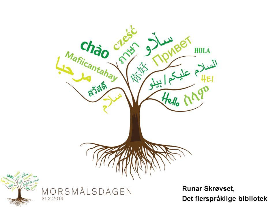 Runar Skrøvset, Det flerspråklige bibliotek