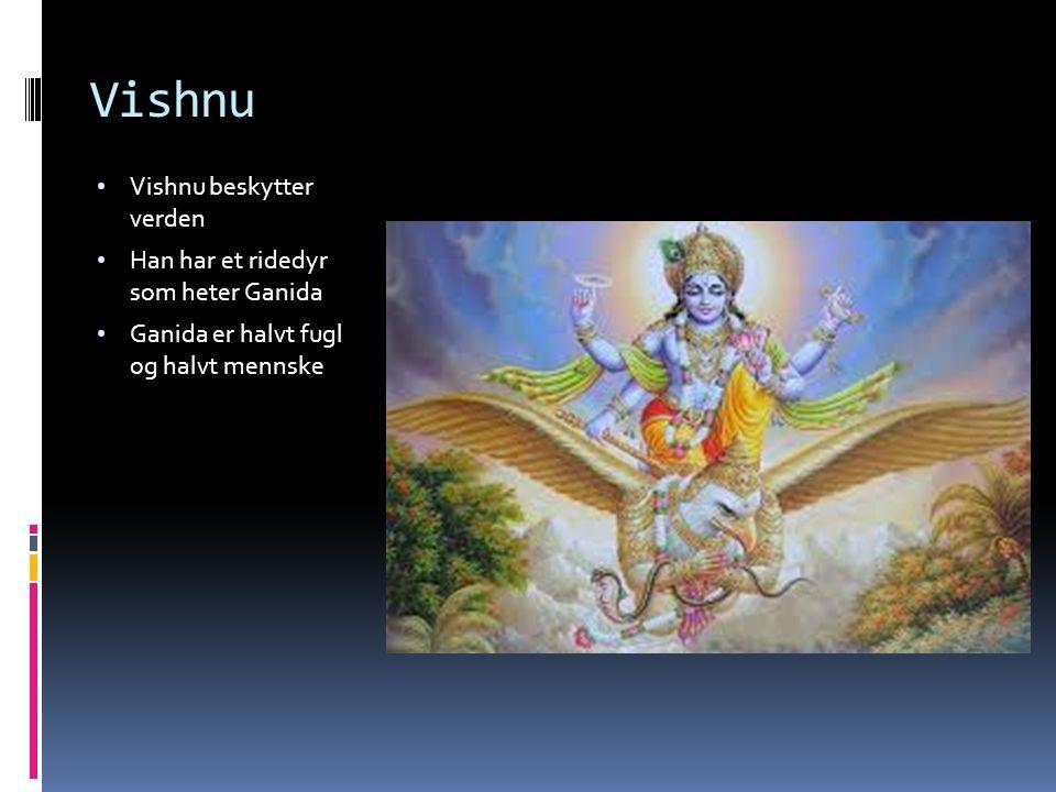 Vishnu Vishnu beskytter verden Han har et ridedyr som heter Ganida Ganida er halvt fugl og halvt mennske