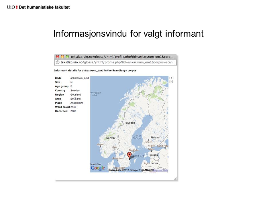 Informasjonsvindu for valgt informant