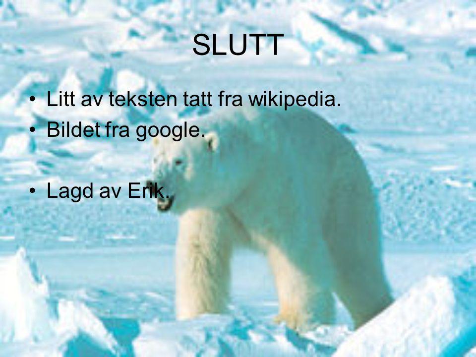 SLUTT Litt av teksten tatt fra wikipedia. Bildet fra google. Lagd av Erik.