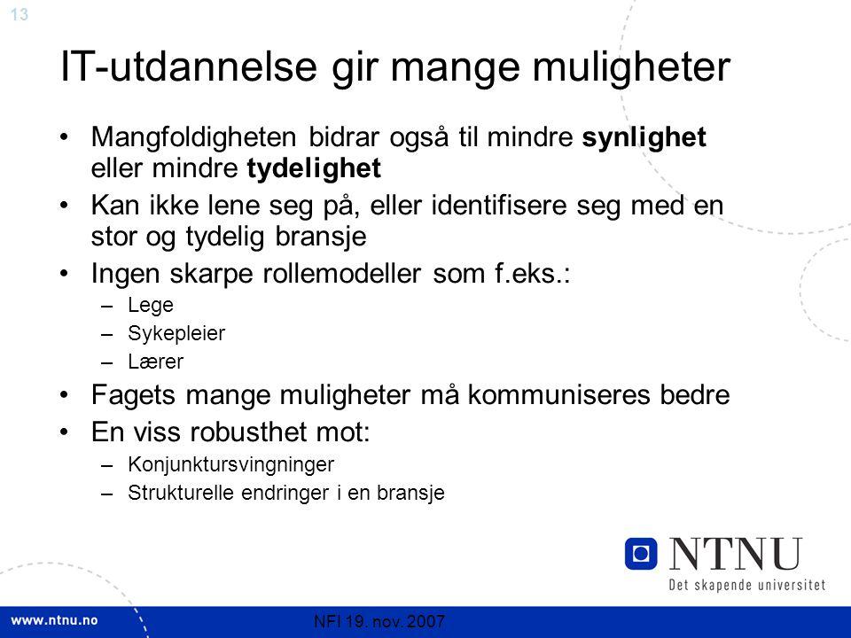 13 NFI 19. nov. 2007 IT-utdannelse gir mange muligheter Mangfoldigheten bidrar også til mindre synlighet eller mindre tydelighet Kan ikke lene seg på,