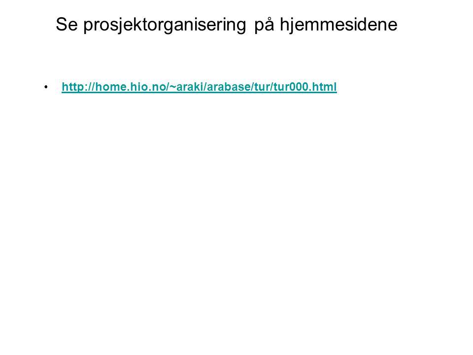 Se prosjektorganisering på hjemmesidene http://home.hio.no/~araki/arabase/tur/tur000.html