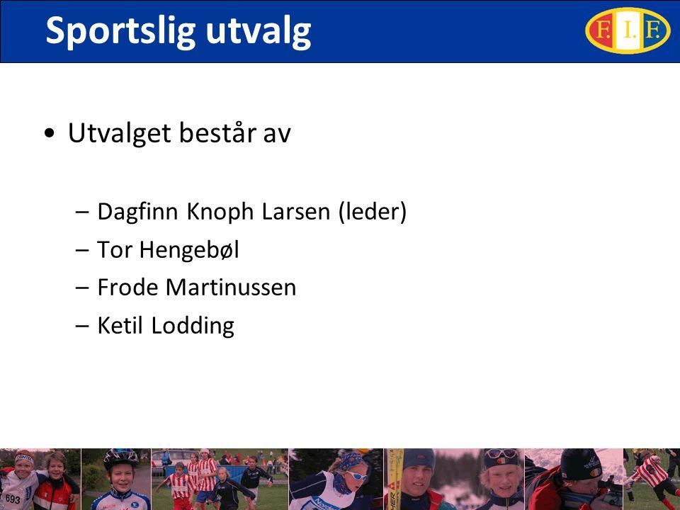 Sportslig utvalg Utvalget består av –Dagfinn Knoph Larsen (leder) –Tor Hengebøl –Frode Martinussen –Ketil Lodding