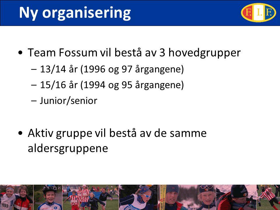 Ny organisering Team Fossum vil bestå av 3 hovedgrupper –13/14 år (1996 og 97 årgangene) –15/16 år (1994 og 95 årgangene) –Junior/senior Aktiv gruppe vil bestå av de samme aldersgruppene