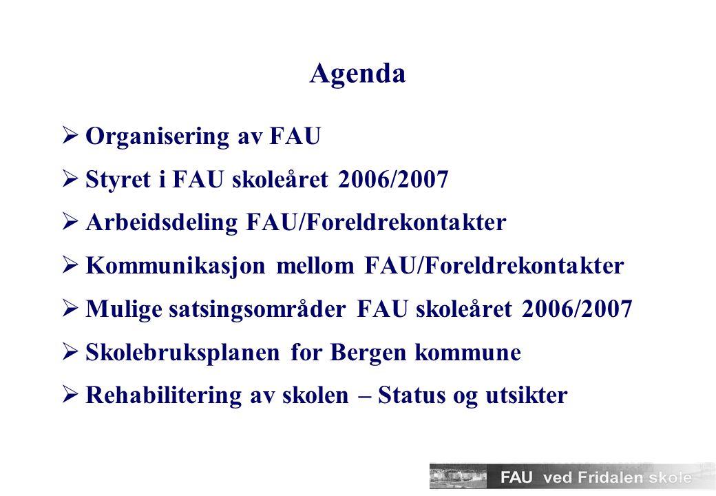 Organisering av FAU  Til sammen ca 20 medlemmer i FAU  Vedtekter godkjent mai 2005  Styre på 4 personer  Vi har delt arbeidet i grupper  Rehabiliteringsgruppe  Kulturgruppe  Miljøgruppe  17.