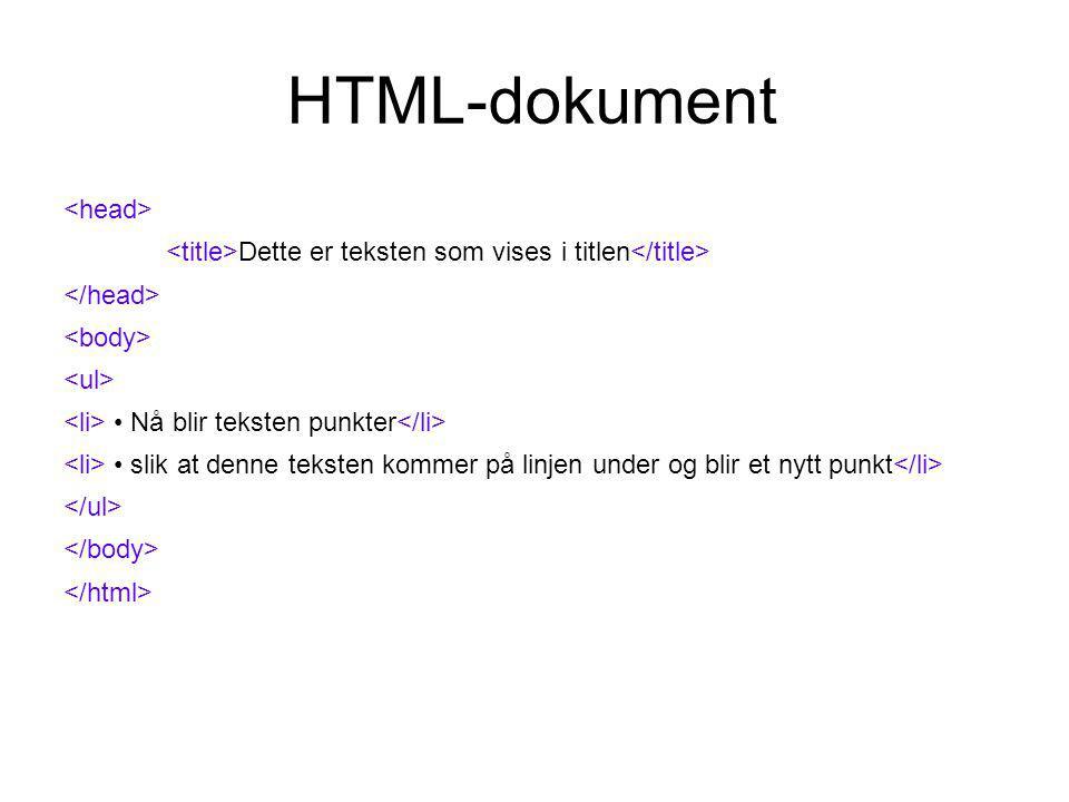 HTML-dokument Dette er teksten som vises i titlen Nå blir teksten punkter slik at denne teksten kommer på linjen under og blir et nytt punkt