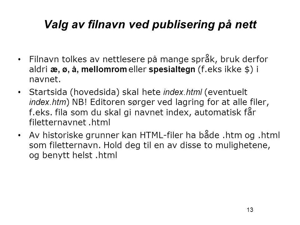 13 Valg av filnavn ved publisering på nett Filnavn tolkes av nettlesere p å mange språk, bruk derfor aldri æ, ø, å, mellomrom eller spesialtegn (f.eks ikke $) i navnet.