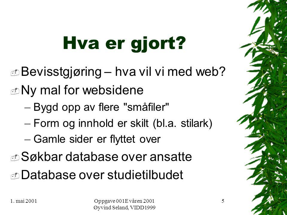1. mai 2001Oppgave 001E våren 2001 Øyvind Seland, VIDD1999 5 Hva er gjort.