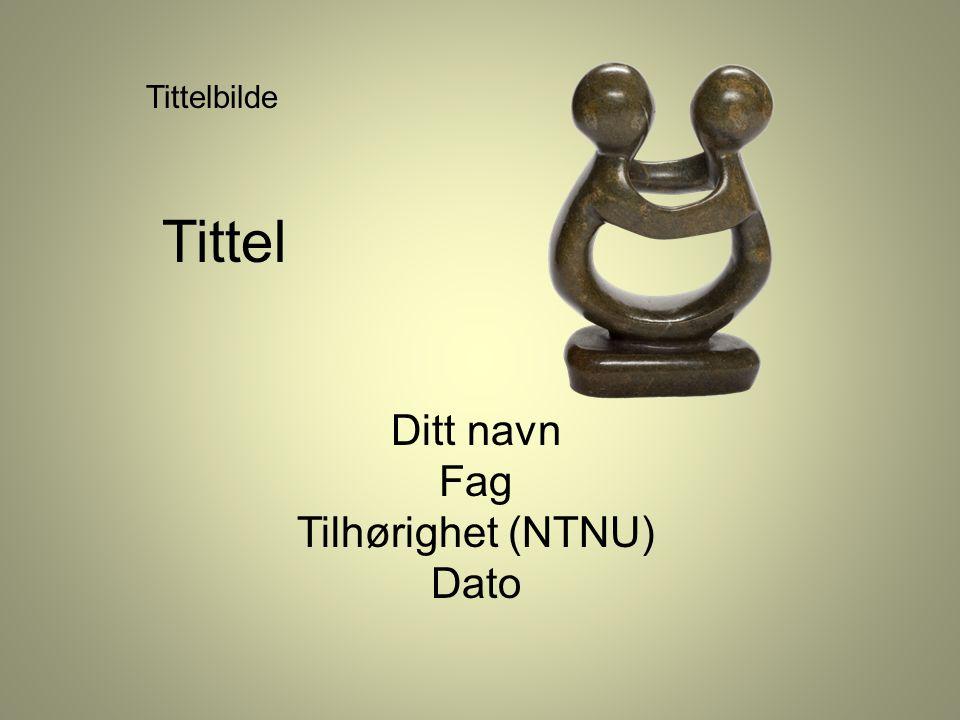 Tittel Ditt navn Fag Tilhørighet (NTNU) Dato Tittelbilde