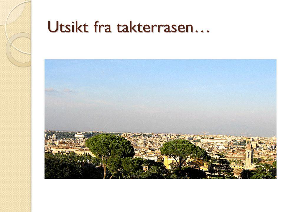 Utsikt fra takterrasen…