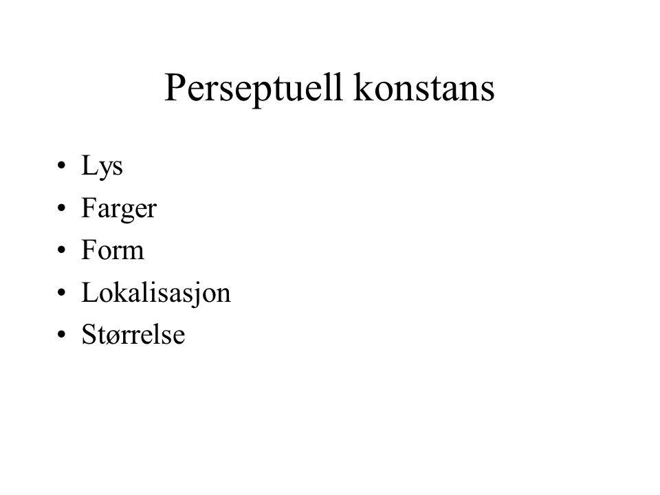 Perseptuell konstans Lys Farger Form Lokalisasjon Størrelse