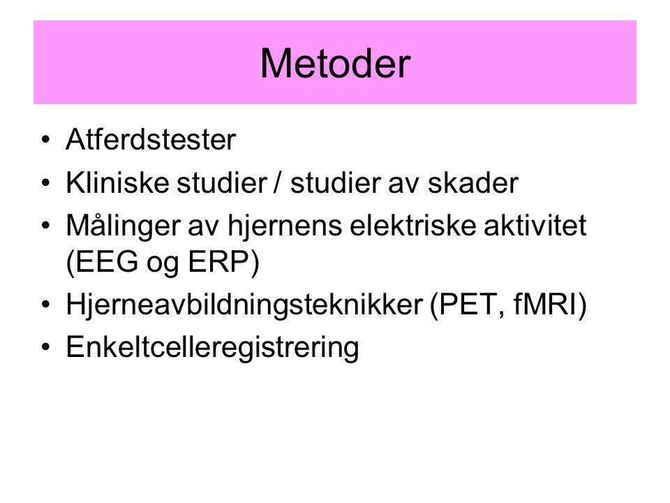 Metoder Atferdstester Kliniske studier / studier av skader Målinger av hjernens elektriske aktivitet (EEG og ERP) Hjerneavbildningsteknikker (PET, fMR