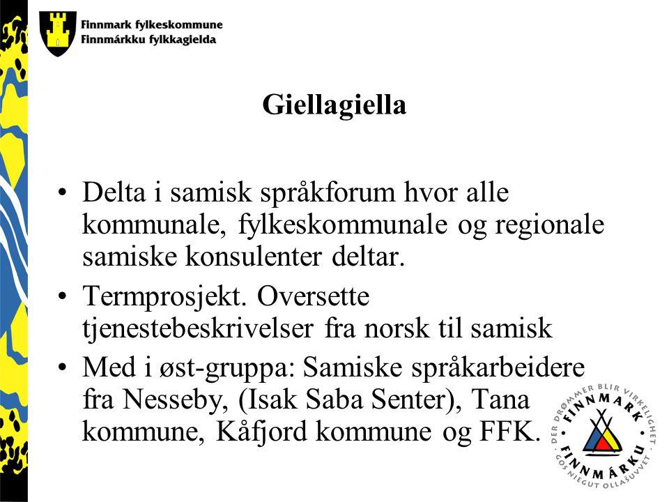 Giellagiella Delta i samisk språkforum hvor alle kommunale, fylkeskommunale og regionale samiske konsulenter deltar. Termprosjekt. Oversette tjenesteb