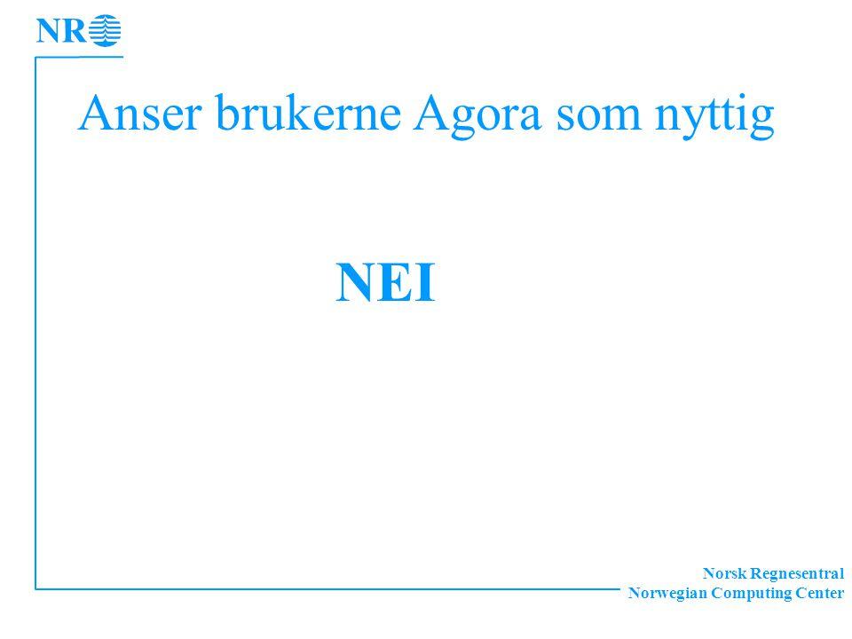 Norsk Regnesentral Norwegian Computing Center Anser brukerne Agora som nyttig NEI
