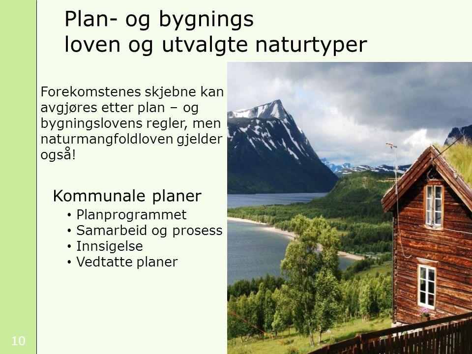10 Kommunale planer Planprogrammet Samarbeid og prosess Innsigelse Vedtatte planer Plan- og bygnings loven og utvalgte naturtyper Foto: Kristin T. Tei