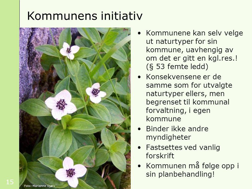 15 Kommunens initiativ Foto: Marianne Gjørv Kommunene kan selv velge ut naturtyper for sin kommune, uavhengig av om det er gitt en kgl.res.! (§ 53 fem