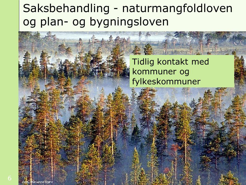 6 Saksbehandling - naturmangfoldloven og plan- og bygningsloven Foto: Marianne Gjørv Tidlig kontakt med kommuner og fylkeskommuner