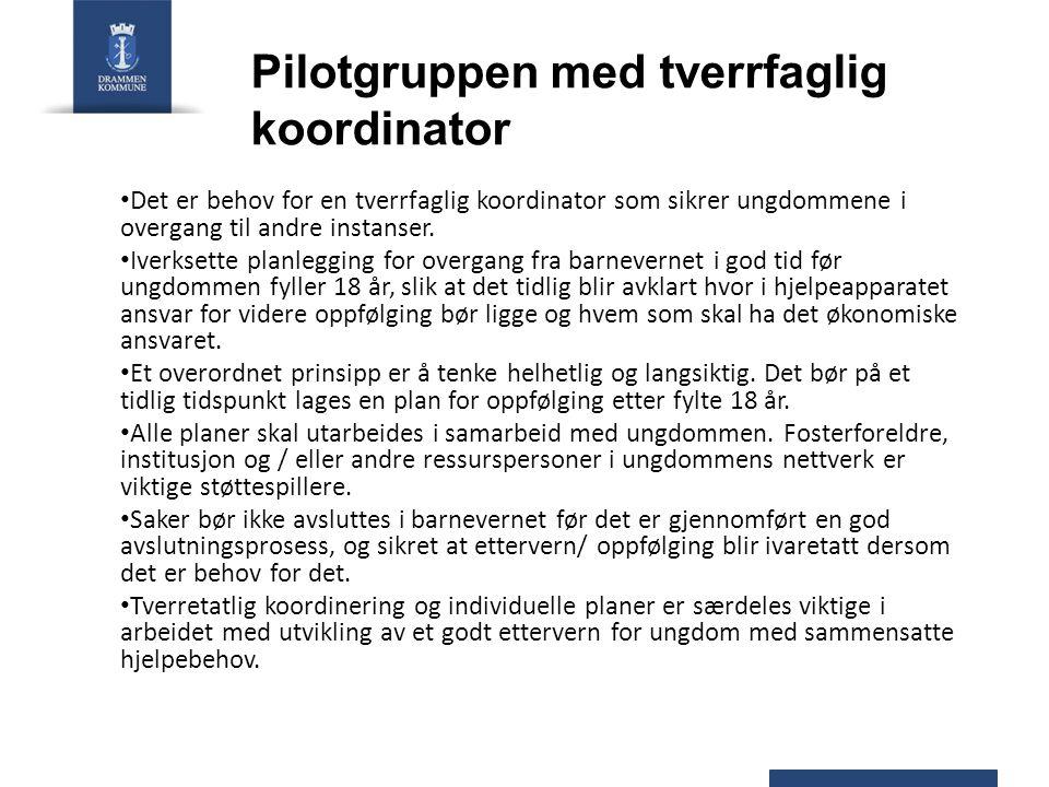 Pilotgruppen med tverrfaglig koordinator Det er behov for en tverrfaglig koordinator som sikrer ungdommene i overgang til andre instanser. Iverksette