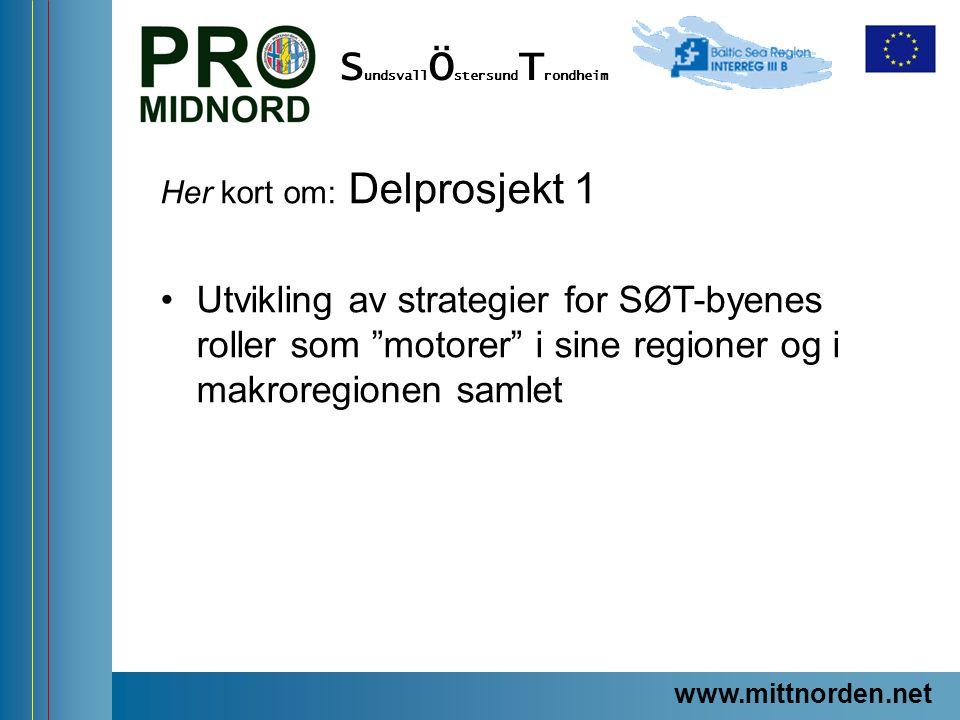 """ProMidNord/SÖT – en förstudie Her kort om: Delprosjekt 1 Utvikling av strategier for SØT-byenes roller som """"motorer"""" i sine regioner og i makroregione"""