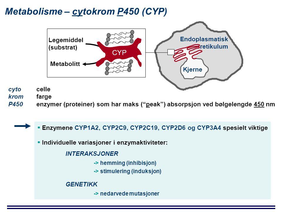 Metabolisme – cytokrom P450 (CYP) cyto celle kromfarge P450 enzymer (proteiner) som har maks ( peak ) absorpsjon ved bølgelengde 450 nm Kjerne Endoplasmatisk retikulum CYP Legemiddel (substrat) Metabolitt  Enzymene CYP1A2, CYP2C9, CYP2C19, CYP2D6 og CYP3A4 spesielt viktige  Individuelle variasjoner i enzymaktiviteter: INTERAKSJONER -> hemming (inhibisjon) -> stimulering (induksjon) GENETIKK -> nedarvede mutasjoner