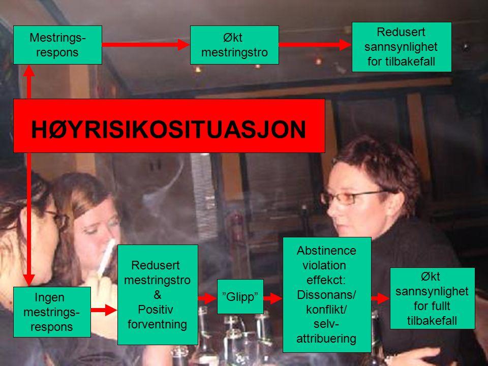 """Håvar Brendryen, Stipendiat, Psykologisk institutt Mestrings- respons Økt sannsynlighet for fullt tilbakefall """"Glipp"""" Redusert mestringstro & Positiv"""