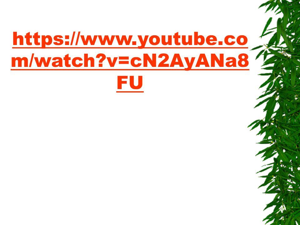 https://www.youtube.co m/watch?v=cN2AyANa8 FU
