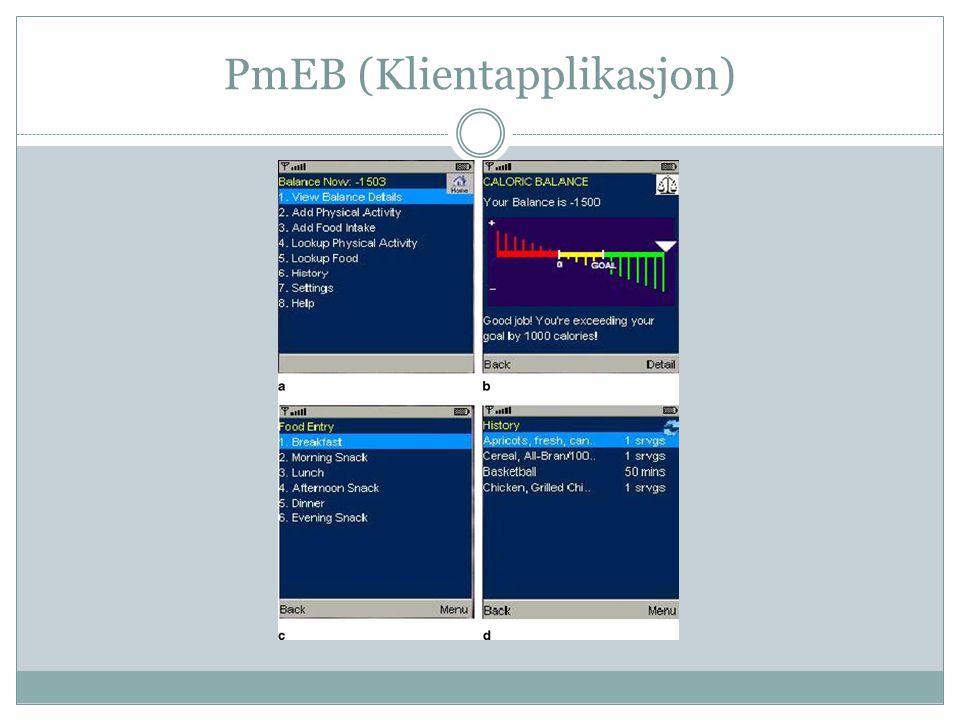 PmEB (Klientapplikasjon)