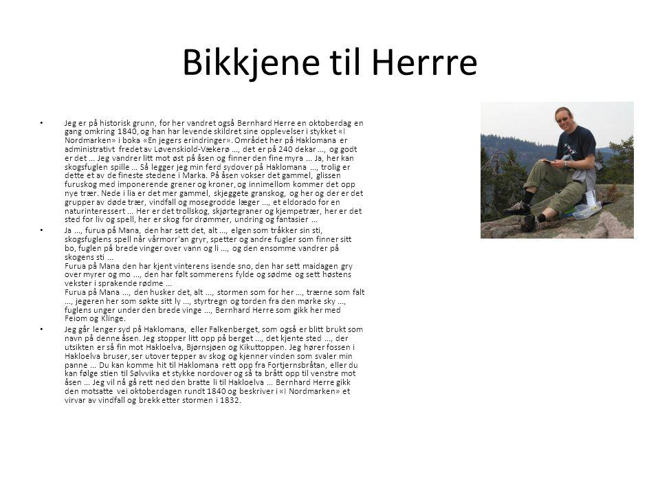 Bikkjene til Herrre Jeg er på historisk grunn, for her vandret også Bernhard Herre en oktoberdag en gang omkring 1840, og han har levende skildret sine opplevelser i stykket «I Nordmarken» i boka «En jegers erindringer».