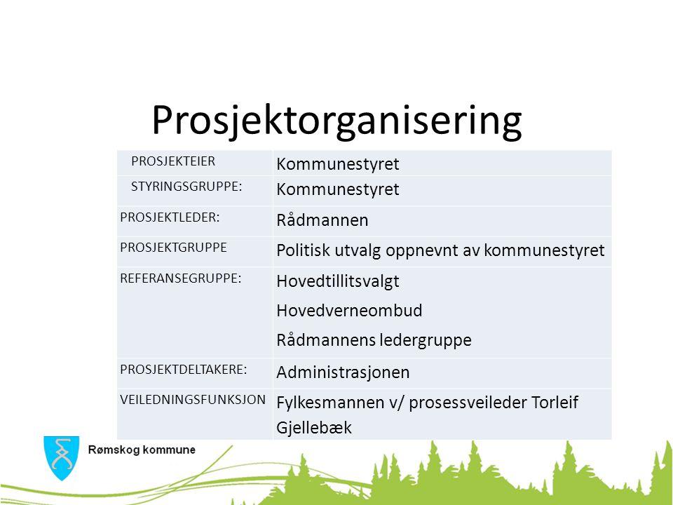 Prosjektgruppe Ordfører Kari Pettersen (Krf) Varaordfører Nils Nilssen (Ap) Jan Birger Holth (Krf) Bjørn Erik Lauritzen (Sp) Jeanette M.