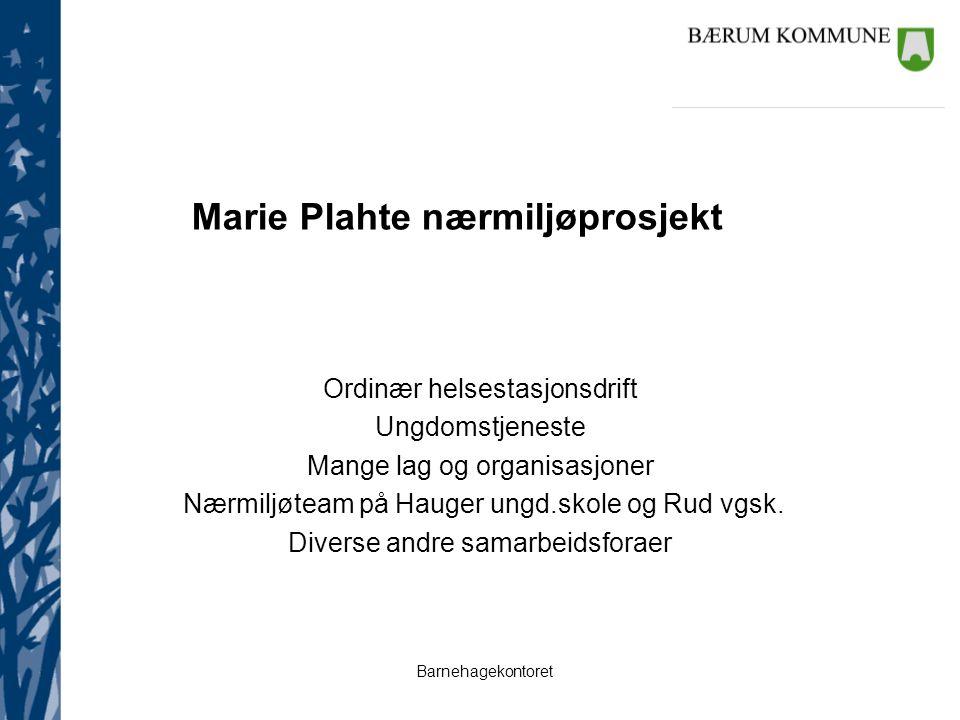 Barnehagekontoret Marie Plahte nærmiljøprosjekt Ordinær helsestasjonsdrift Ungdomstjeneste Mange lag og organisasjoner Nærmiljøteam på Hauger ungd.skole og Rud vgsk.