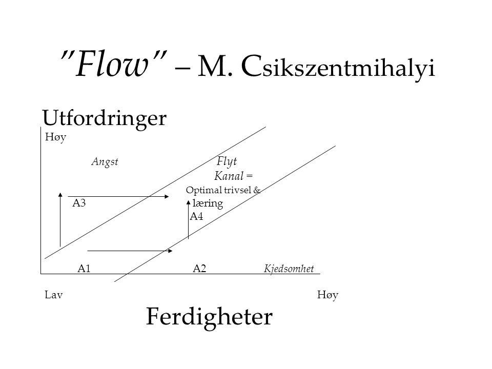 """""""Flow"""" – M. C sikszentmihalyi Utfordringer Høy Angst Flyt Kanal = Optimal trivsel & A3 læring A4 A1 A2 Kjedsomhet Lav Høy Ferdigheter"""