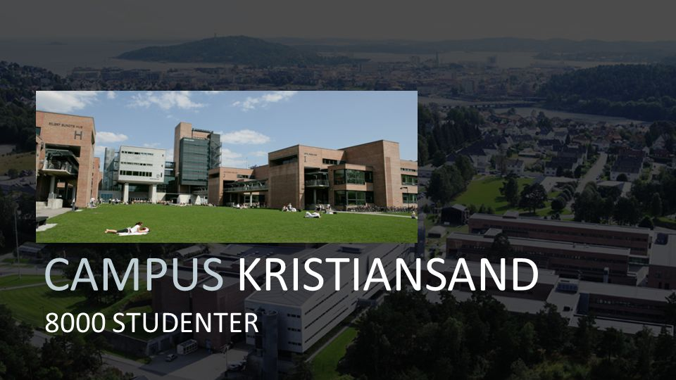 8000 STUDENTER CAMPUS KRISTIANSAND