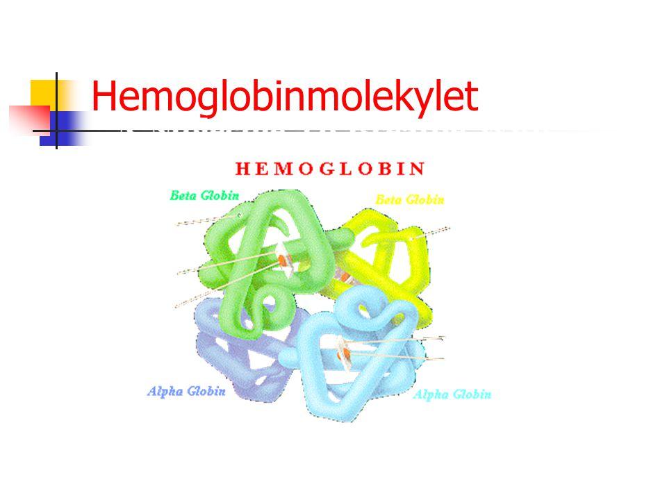 Maligne blodsykdommer I Leukemier: økt produksjon av hvite blodlegemer i beinmargen utgått fra blodcellenes stamceller Lymfoproliferative sykdommer Myeloproliferative sykdommer Lymfomer: kreft i lymfoid vev Myelomatose (makroglobulinemi) – økt produksjon av plasmaceller i beinmargen