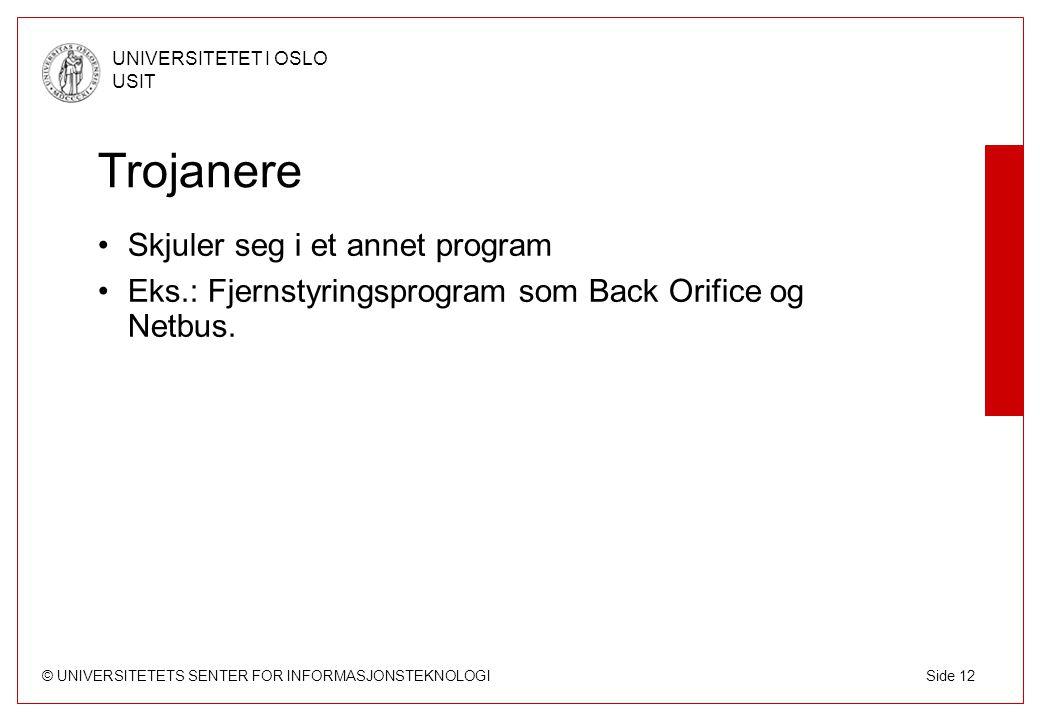 © UNIVERSITETETS SENTER FOR INFORMASJONSTEKNOLOGI UNIVERSITETET I OSLO USIT Side 12 Trojanere Skjuler seg i et annet program Eks.: Fjernstyringsprogram som Back Orifice og Netbus.