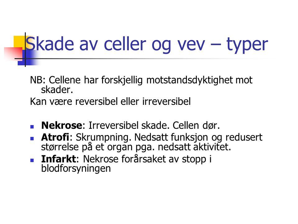 Skade av celler og vev – typer NB: Cellene har forskjellig motstandsdyktighet mot skader.