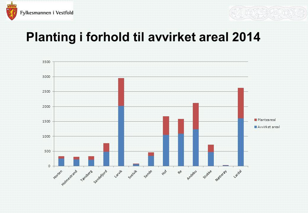 Planting i forhold til avvirket areal 2014