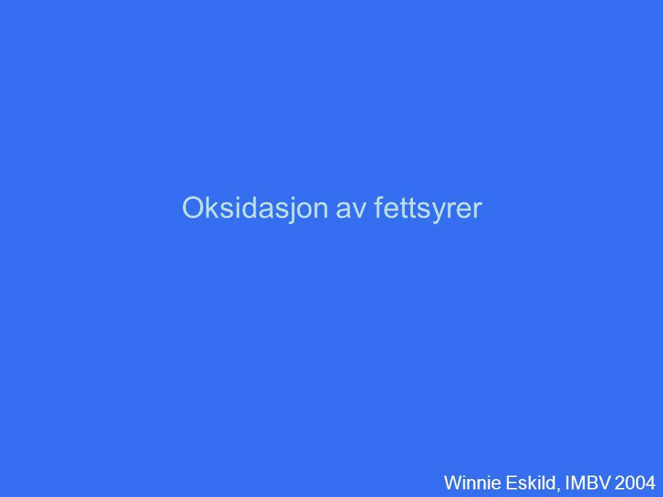 Oksidasjon av fettsyrer Winnie Eskild, IMBV 2004