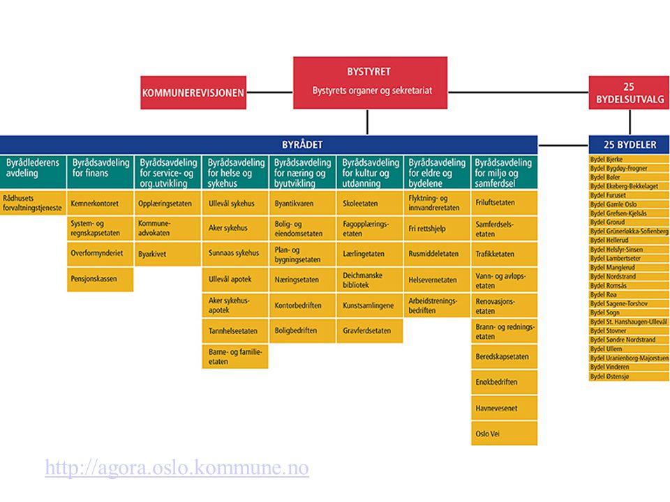 De spesielle komiteenes arbeidsoppgaver Finanskommiteen –Økonomiplan og årsbudsjett –Tilleggsbevilgninger og budsjettjusteringer –Regnskap –Årsberetninger