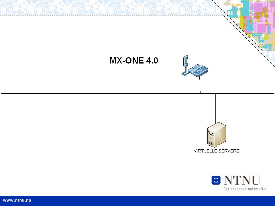 offentlig nett Dataserver Sentralbord Drift & vedlikehold Kalender, mail etc.